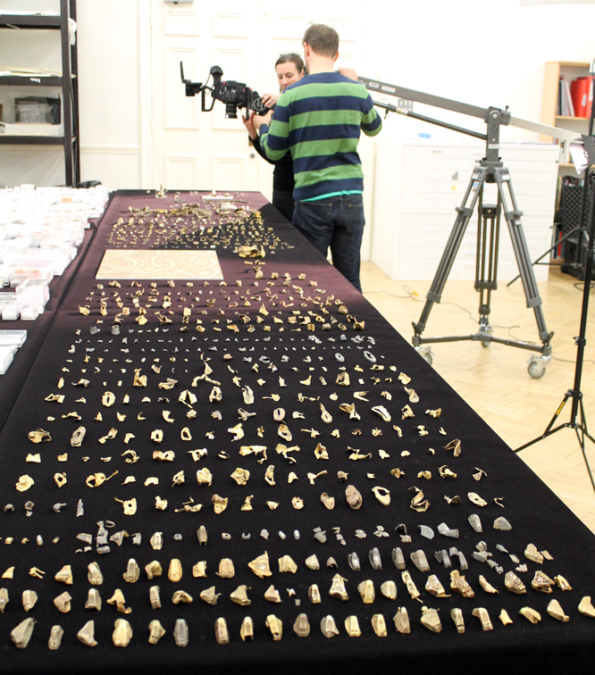 Filming the Hoard